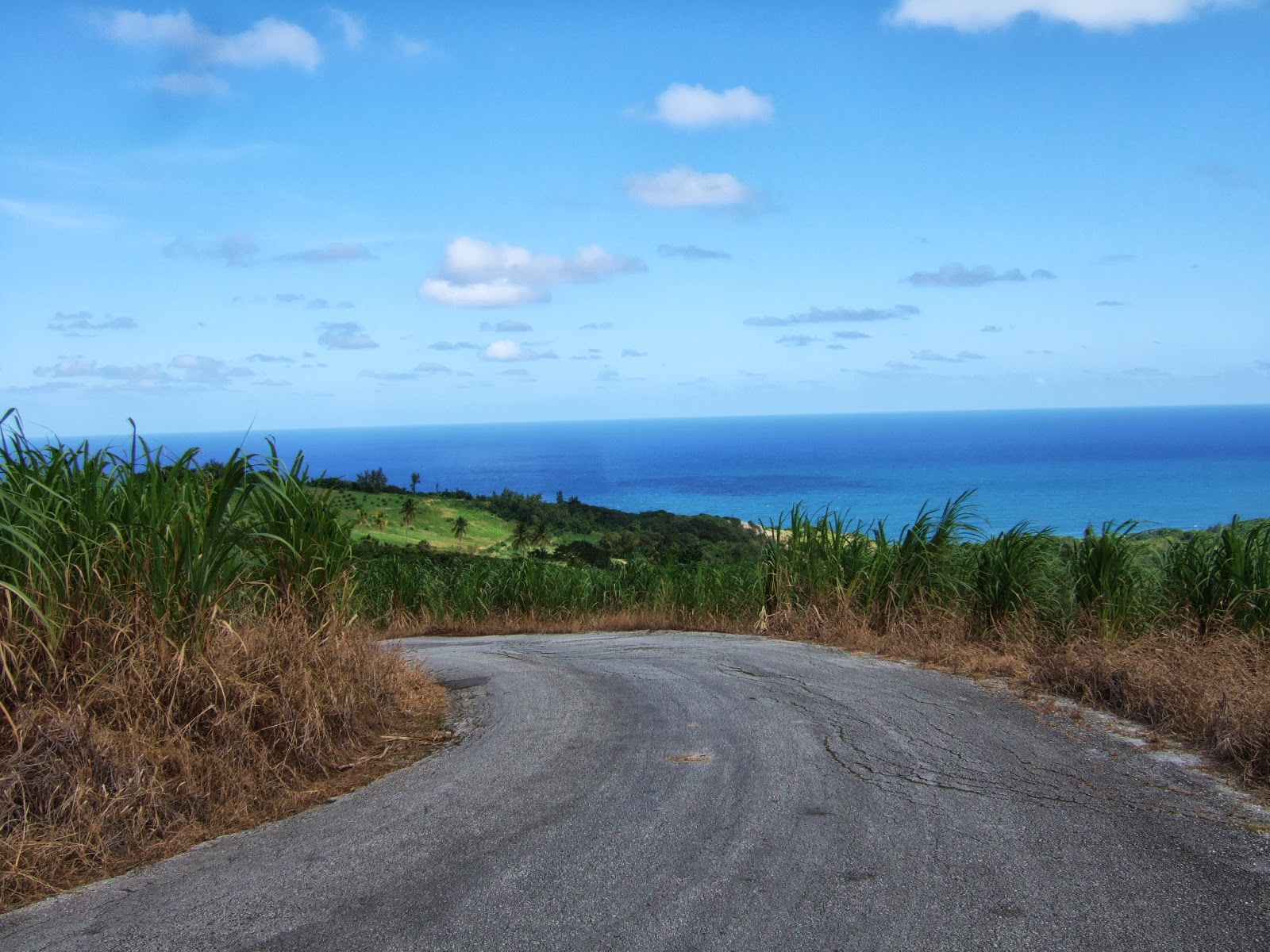 The never ending, winding roads of Barbados.