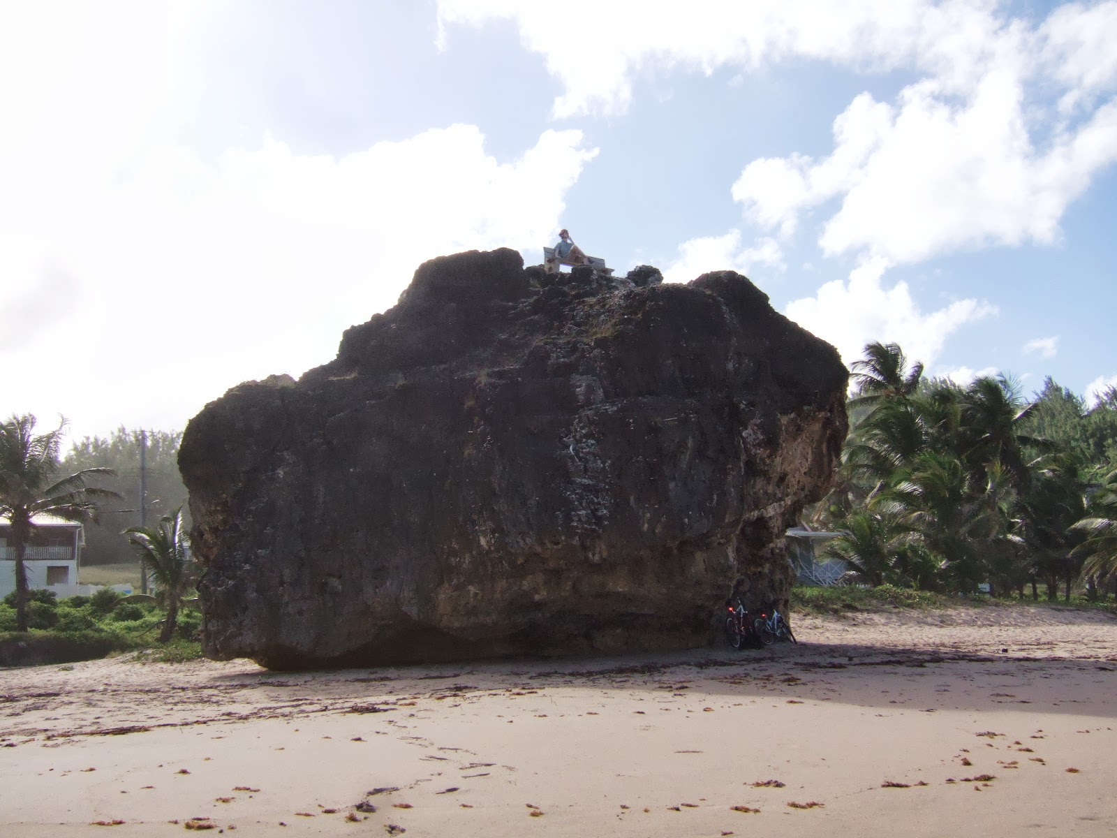 Bathsheba beach boulder