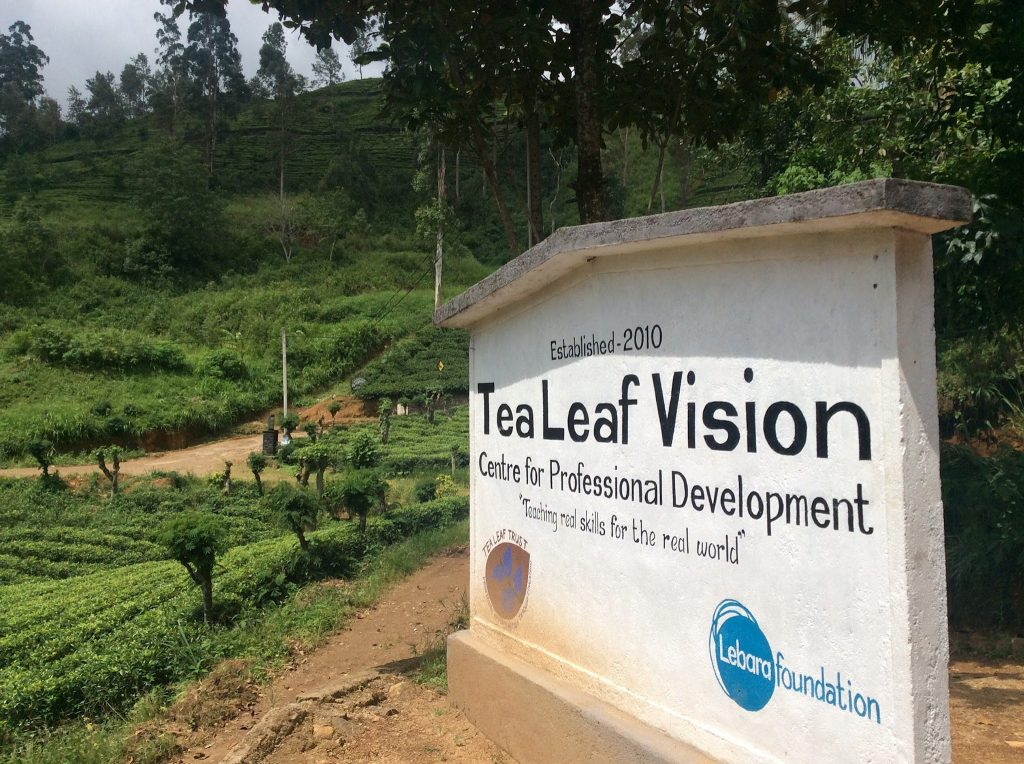 Tea Leaf Vision school